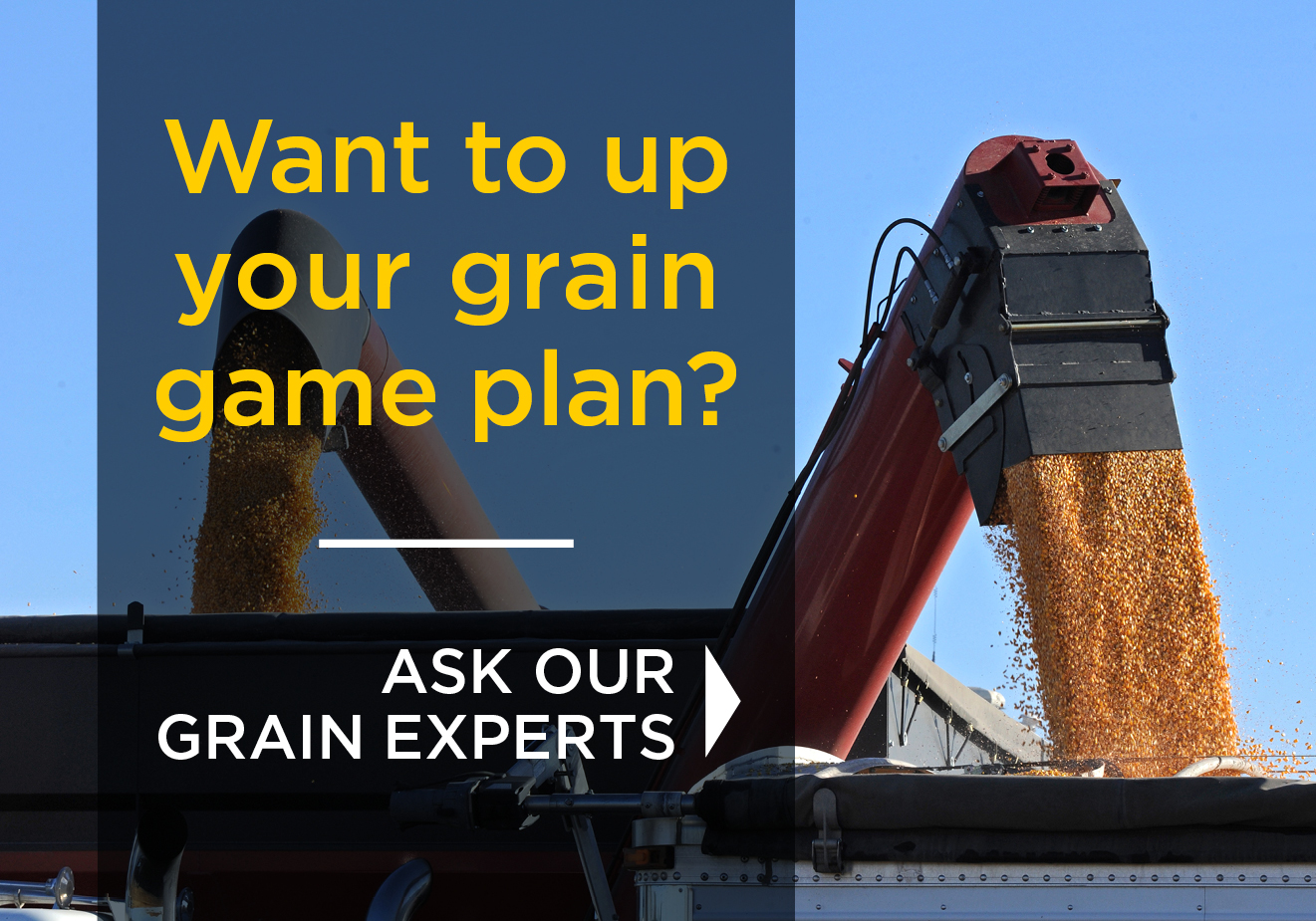 Want to up your grain game plan? Ask our grain experts.